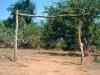 zimbabwe-800